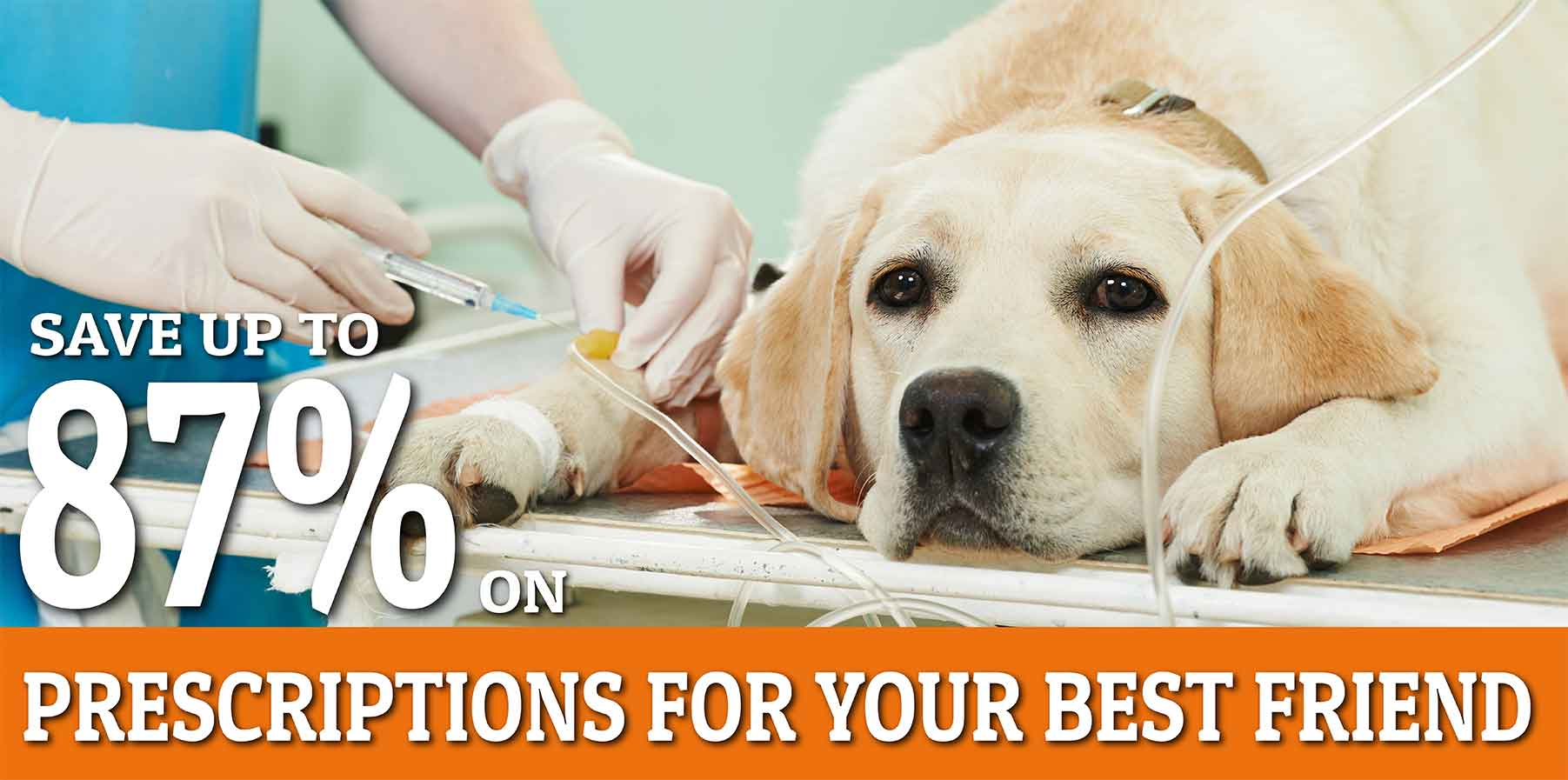 Pet Prescription Discounts