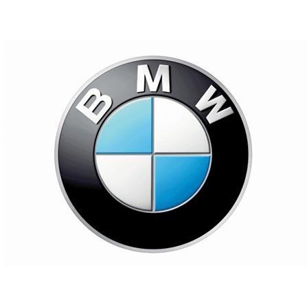 bmw auto dealership broker