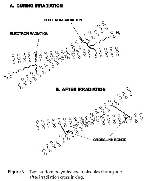 irradiated polymer crosslinking