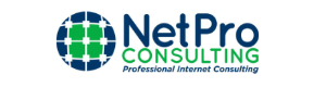 WSI Net Pro Consulting