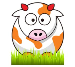 One Orange Cow