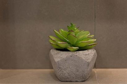 Charming succulent in stone pot bathroom accessory in a bathroom renovation by Adelaide Bathrooms