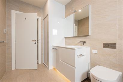 Caroma: Forma Rimless wall faced pan with in-wall cistern. Custom made 2 Pak floor to ceiling laundry cabinet with roller door.