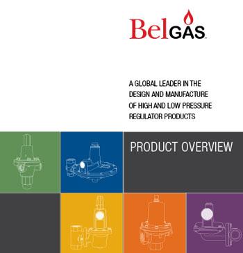 BelGAS Literature