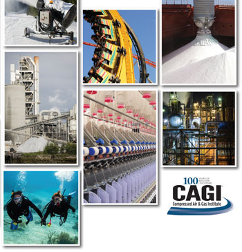 CAGI Brochure