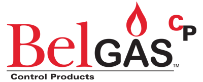 BelGasCP