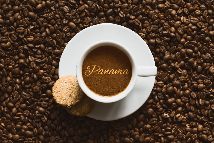 Cafe Panama Santa Esmeralda/Boquete 250 Grs