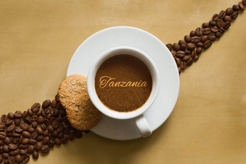 Cafe Tanzanie Aa Kilimandjaro 250 Grs