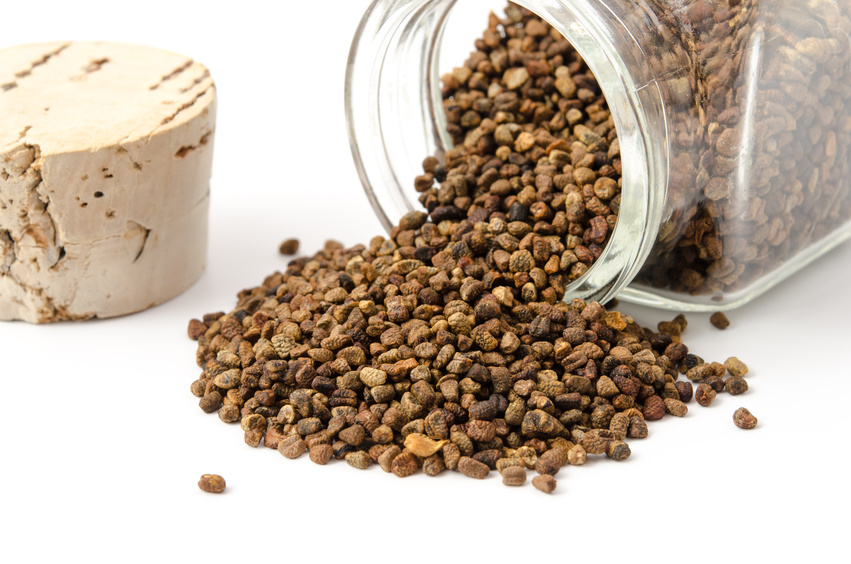 Cardamone Grain 50 Grs