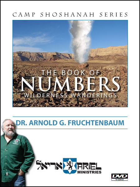 The Book of Numbers - DVD