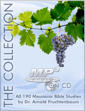 The Collection (MP3 on CD)