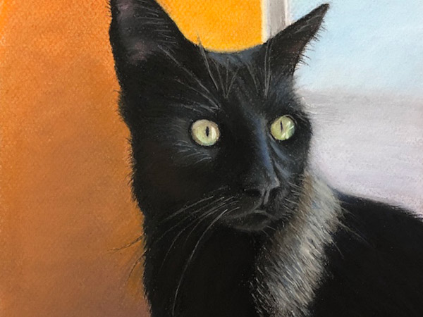 Painting of Theo a black cat, by Diane Morgan