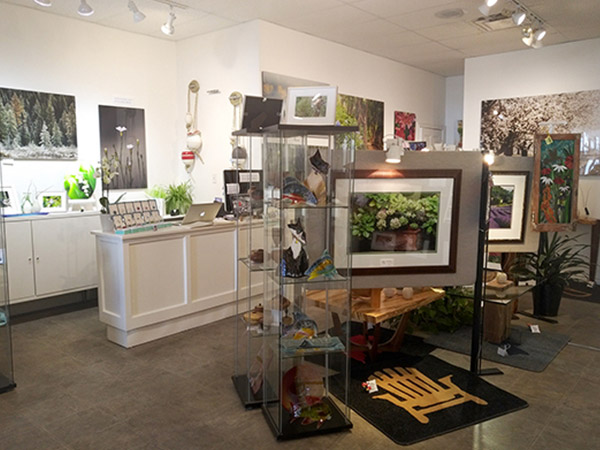 Inside the gallery, displays of framed photographs.