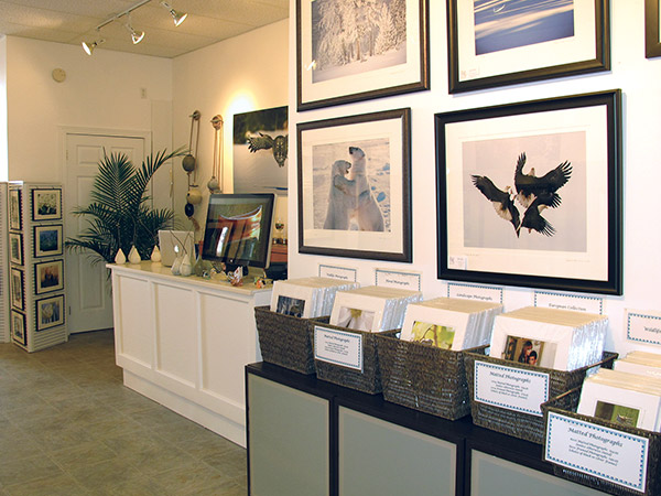 Framed photographs hanging on the wall and prints in bins.
