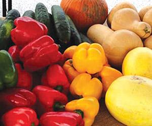 fresh local farmers' market vegetables