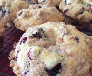 blueberry muffins at garafraxa café