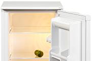 48cm Fridge with Ice Box