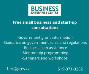 Business Enterprise Centre ad free consultants