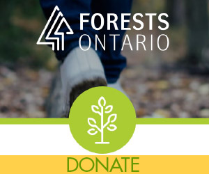 Forests ontario ad with logo and donate.
