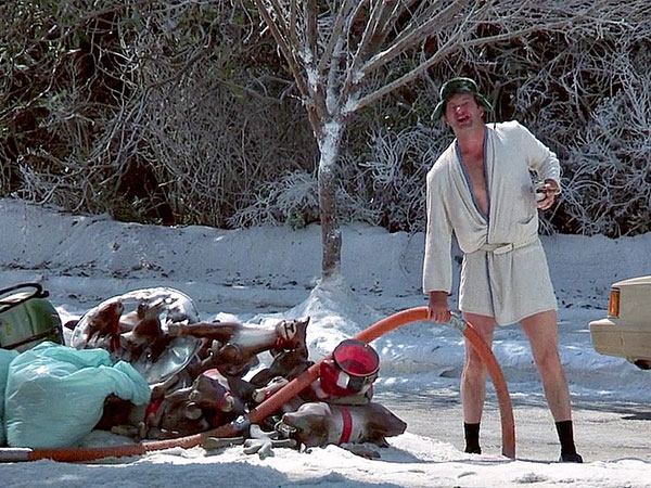 Cousin Eddie in Christmas Vacation.