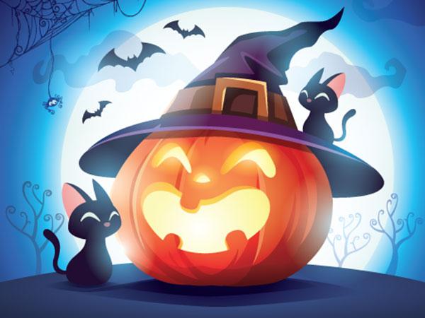 Halloween pumpkin and black cats