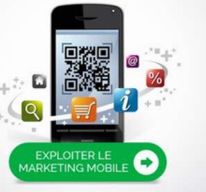 presence-web-site-wsi-martinique-mobile