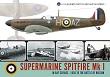 SUBMARINE SPITFIRE MK I IN RAF SERVICE - 1936 TO THE BATTLE OF BRITAIN