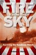 FIRE FROM THE SKY SURVIVING THE KAMIKAZE THREAT