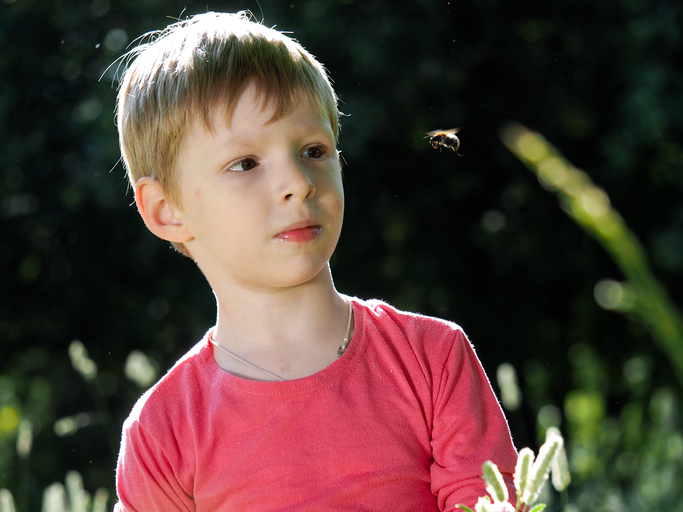 Phobias: Helping child with fear of bees