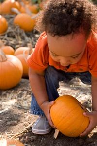 Autumn Holiday Rituals that Nurture Family Connection
