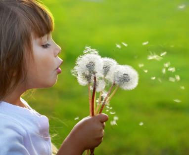 Positive Parenting Your Preschooler: Daily Life