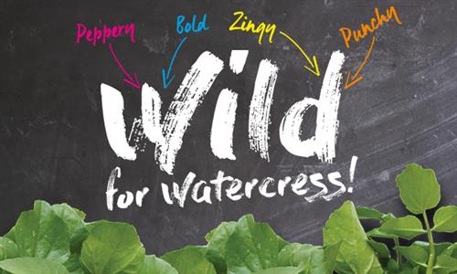 Wild For Watercress