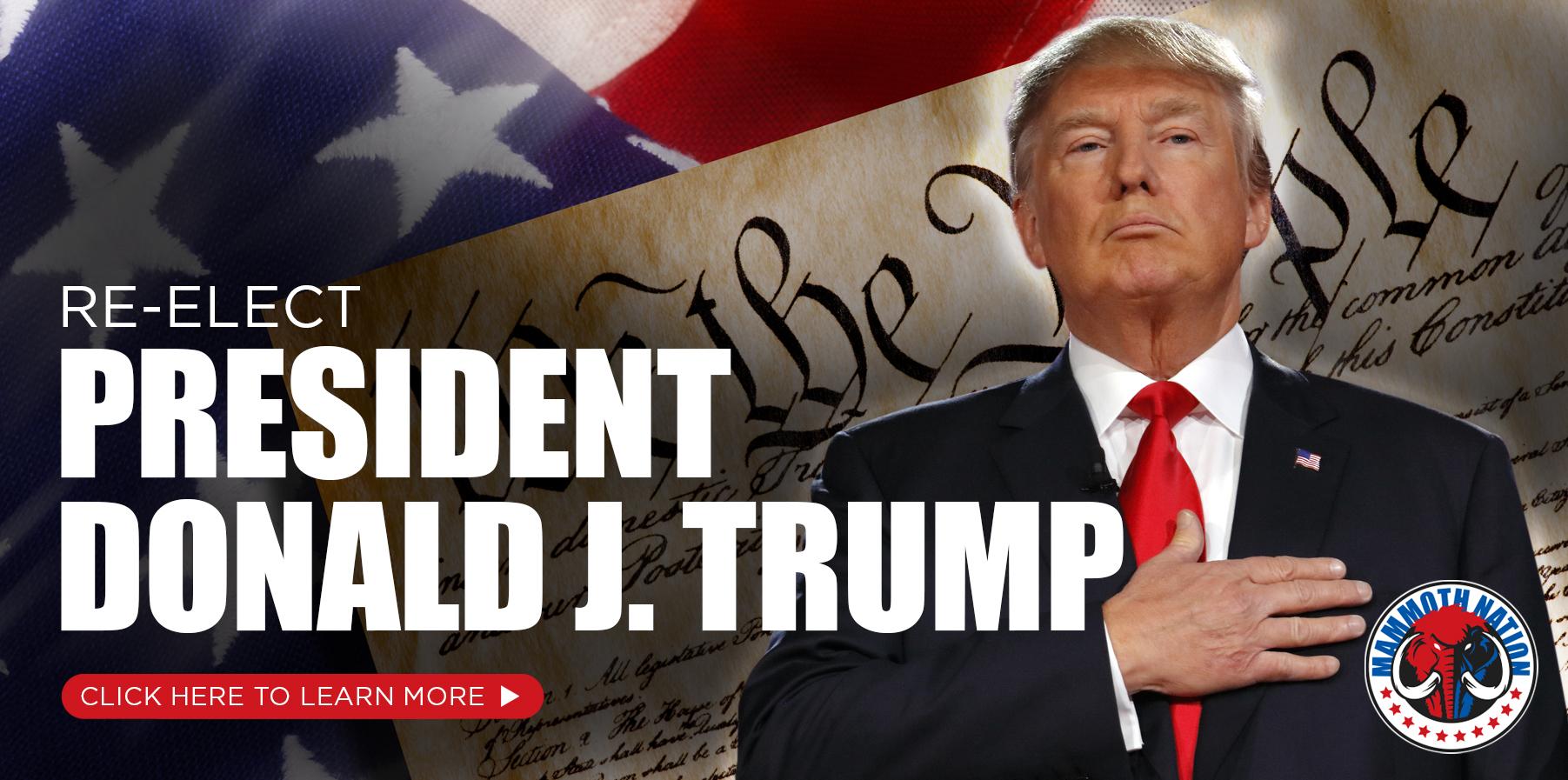 The Trump campaign