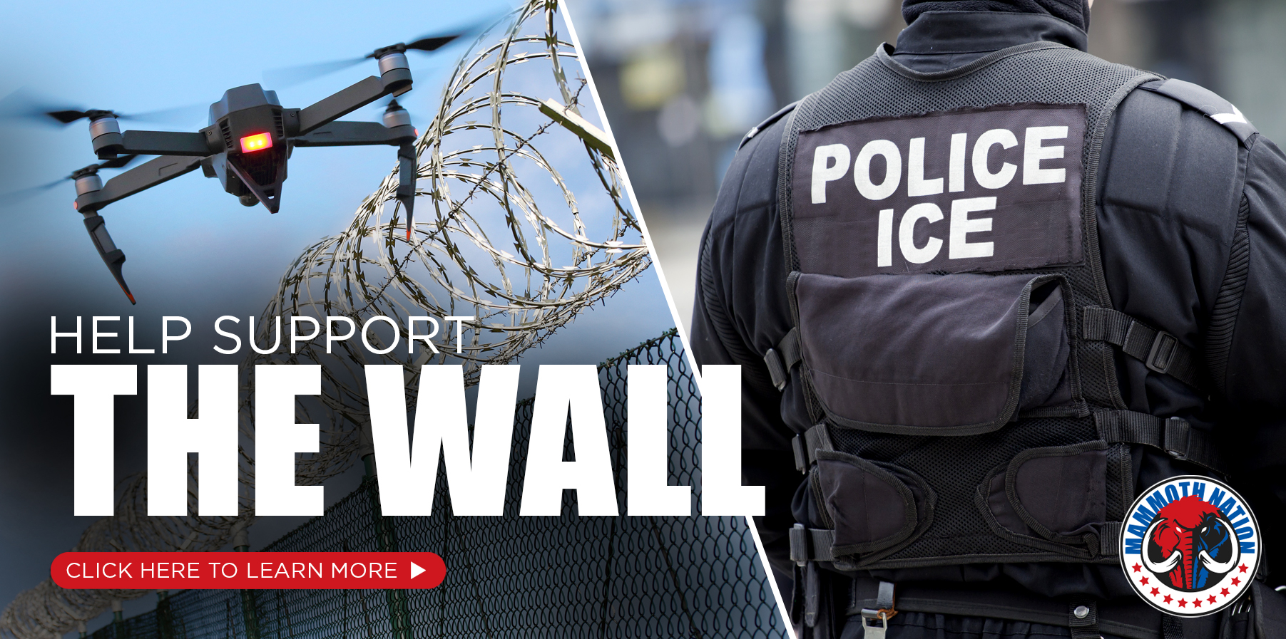 The Wall / ICE